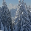 Mountain winter landscape — Foto Stock