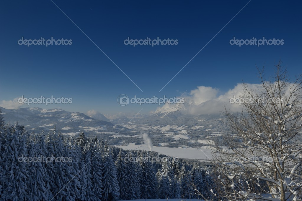 Nature mountaint winter landscape with tree and fresh snow — 图库照片 #17397793