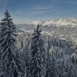 Mountain winter landscape — Stock fotografie