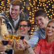 Group of happy young drink wine at party — Stock Photo #19444981