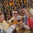 Group of happy young drink wine at party — Stock Photo #19446445