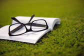 Glasses on a book outside with grass — Stock Photo