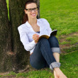 Young woman reading a book in the park — Stock Photo #28075743