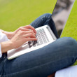 Woman with laptop in park — Stock Photo #28080617