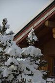Alpine hut in winter — Stock Photo