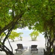 Tropical beach chairs — Lizenzfreies Foto