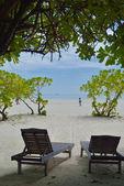 Tropical beach chairs — Stock Photo