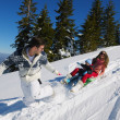 Family ridding sledge — Stock Photo #32933019