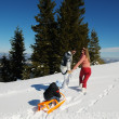 Family ridding sledge — Stock Photo #32933183
