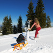 Family ridding sledge — Stock Photo #32933211
