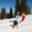 Family ridding sledge — Stock Photo #33932637