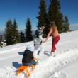 Family ridding sledge — Stock Photo #33932647