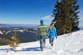 对年轻夫妇在冬日雪景 — 图库照片