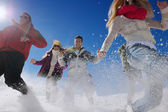 Friends have fun at winter on fresh snow — Stock fotografie