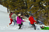 Friends have fun at winter — Stock Photo