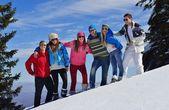 Друзья весело зимой на свежий снег — Стоковое фото