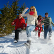 Zdjęcie stockowe: Friends have fun at winter on fresh snow