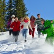 Group of friends outdoors in winter — Stock Photo #36056519
