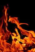 Blaze fire flame texture background — Stock Photo