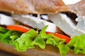 Sandwich close up with vegetables and cheese — Stock Photo