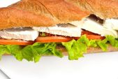 Fresh sandwich close up with vegetables and meat — ストック写真