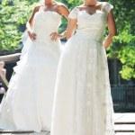 Beautiful brides outdoor — Stock Photo #6987217