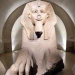 Sfing at louvre museum in paris — Stock Photo #9527333