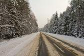Estrada do país — Foto Stock