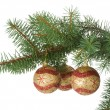 Three christmas balls in a fir branch — Stock Photo #1831705
