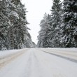 Snowy country road view from below — Stock Photo #2705020