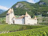 Chateau d'Aigle — Stok fotoğraf