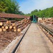 Stock Photo: Lumber yard