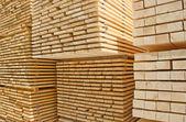Parafusos prisioneiros de madeira frescos — Foto Stock