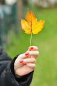 Yellow leaf in woman hand — Stock Photo