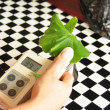 Stock Photo: Chlorophyll Meter