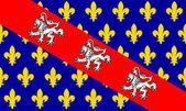 Marche flag — Stock Photo