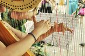 Harp player — Стоковое фото