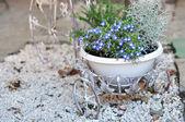 Blumen-deko — Stockfoto
