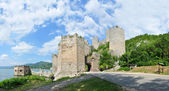 Golubac Fortress — Stock Photo