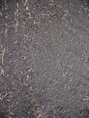 Grey soil — Stock Photo