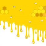 Backdrop honey — Stock Vector #14696509