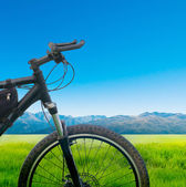 Cycling bicycle — Stock Photo