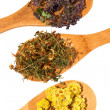 Medicinal herbs. — Stock Photo