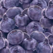 Stock Photo: Rip blueberry background macro