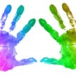 Rainbow hand prints on white — Stock Photo