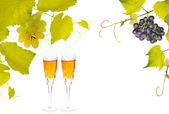 Glasses in vine frame on white — Stock Photo