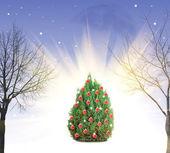 裸の木とクリスマス ツリー — ストック写真