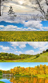 Four seasons landscapes set — Stock Photo