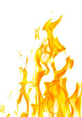 Isolated on white dark yellow flame — Stock Photo