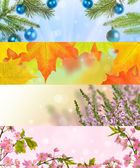 Four seasons horizontal nature strips — Stock Photo